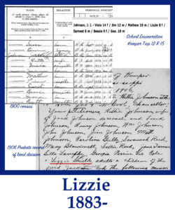 Lizzie cell